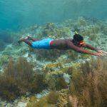 Spots plongée Bonaire avec Divi Dive snorkeling