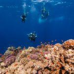 croisière snorkeling en famille