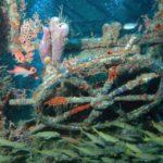 Plongée épave Martinique