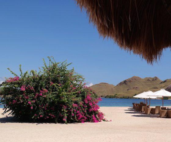 Komodo Resort Spors d'Evasion