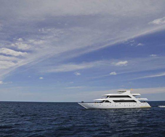 Croisière plongée Maldives Haleema