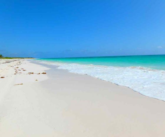 plage Cat Island Bahamas