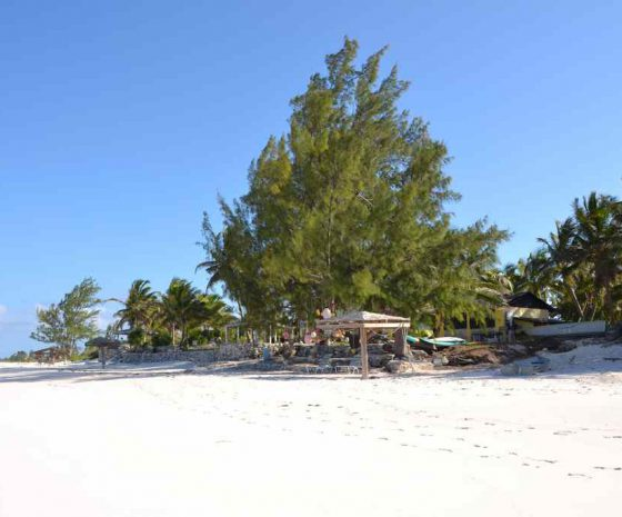 Plage Greenwood Beach resort Cat island - Copyright The Islands Of The Bahamas - Ministry of Tourism (2)
