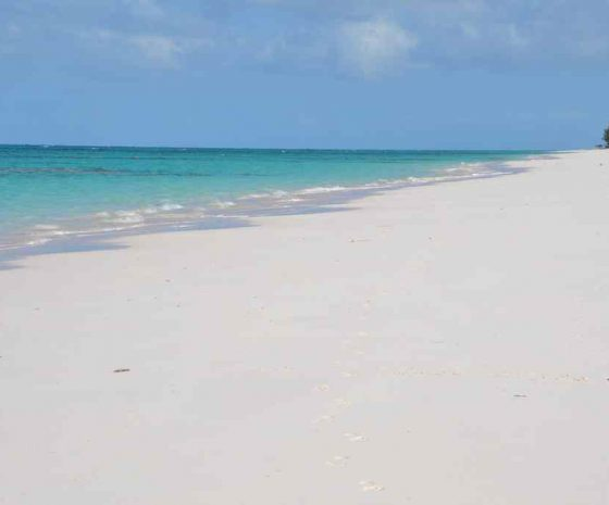 Plage devant Greenwood Beach resort Cat island - Copyright The Islands Of The Bahamas - Ministry of Tourism