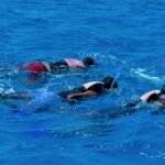 Snorkelers Egypte Marsa Nakari