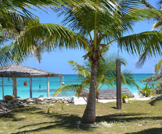 plage Greenwood Beach resort Cat island - Copyright The Islands Of The Bahamas - Ministry of Tourism