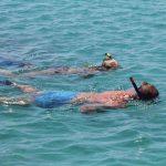 snorkeleurs en Egypte