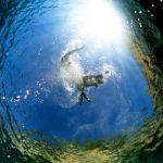 Big-Blue-Diving-Bol